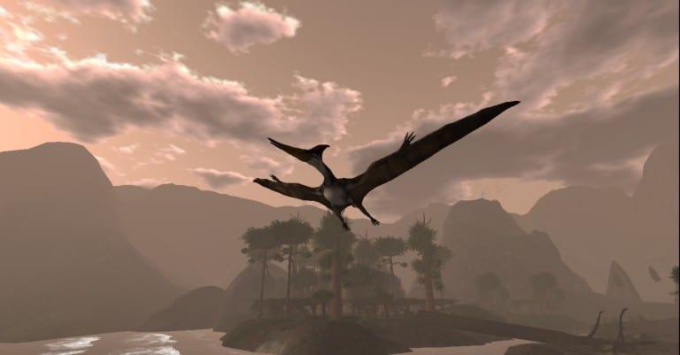 Pteranodon_003