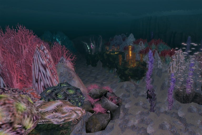 6. Reef Night edit
